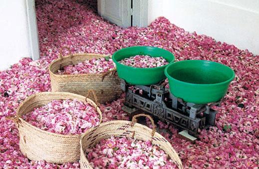 شراء MOROCCAN ROSE WATER
