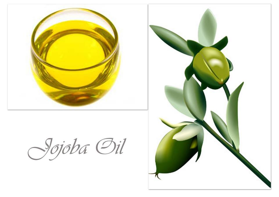شراء Jojoba oil