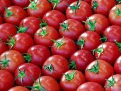 شراء الطماطم