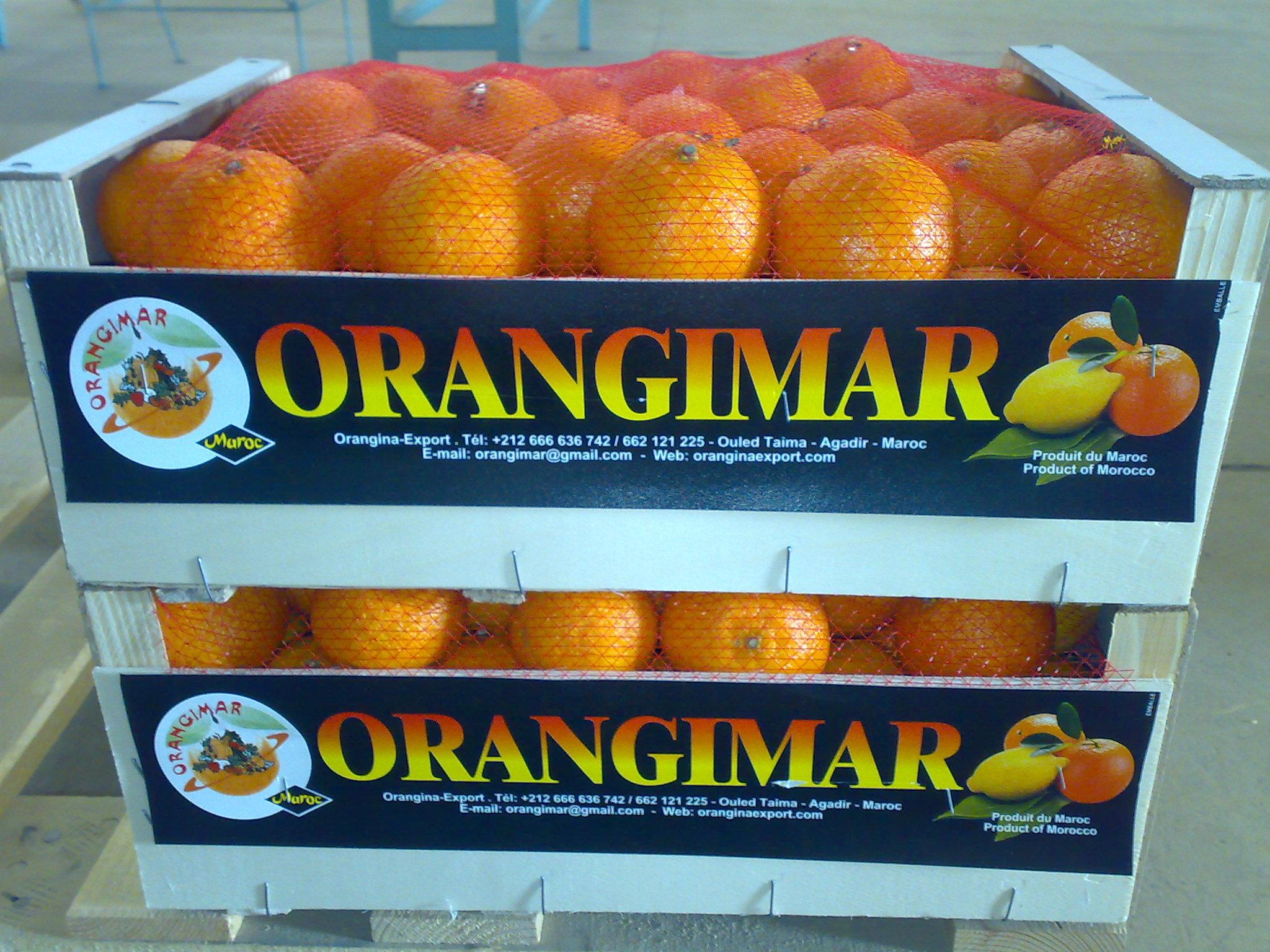 Orangina Exporty, أكادير
